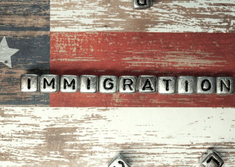 Illegal immigration, Border crisis, Joe Biden, Donald Trump, southern border, immigration,